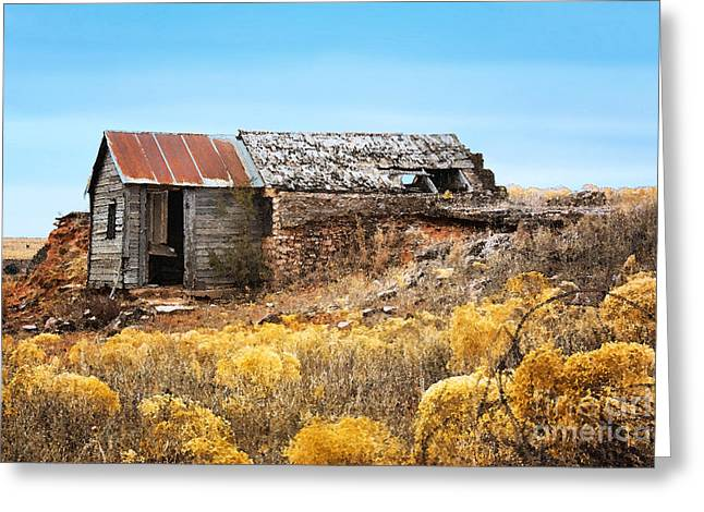 Old House Photographs Greeting Cards - Western Half Dugout Greeting Card by Betty LaRue