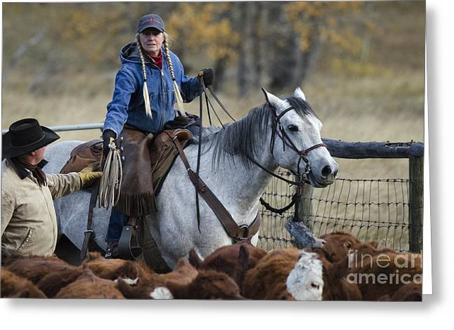Cattle Drive Photographs Greeting Cards - Western Living 10 Greeting Card by Bob Christopher