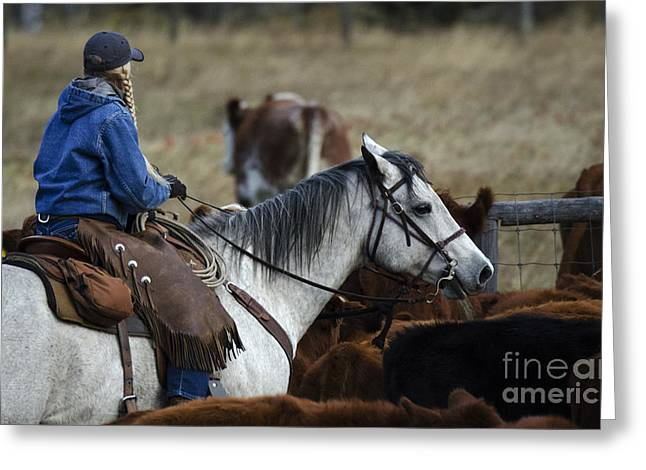 Cattle Drive Photographs Greeting Cards - Western Living 4 Greeting Card by Bob Christopher
