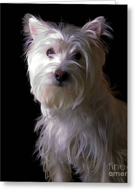 Westie Greeting Cards - Westie Drama Greeting Card by Edward Fielding