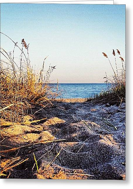 Westport Ct Greeting Cards - Westport Connecticut Sand Greeting Card by Nancy Wilt