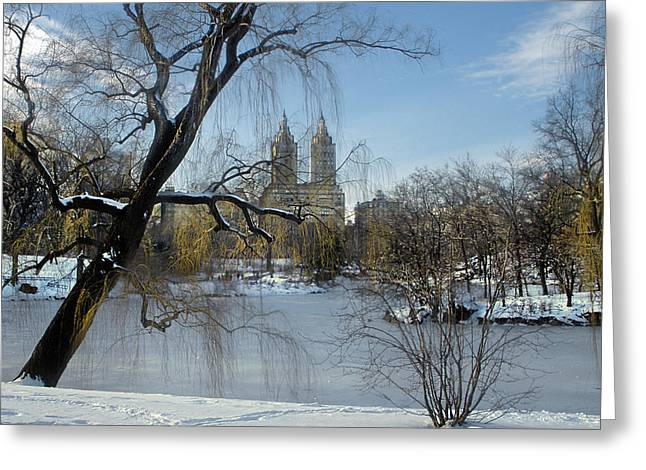 Reflection Of Sun In Clouds Greeting Cards - Westside View From Central Park Greeting Card by Muriel Levison Goodwin