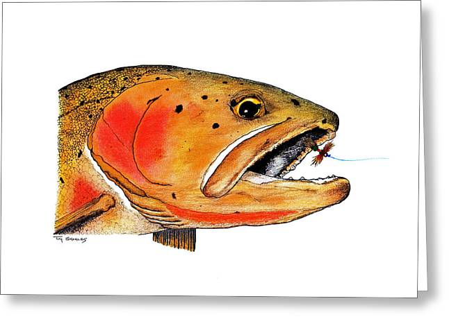 Trout Fishing Pastels Greeting Cards - Westslope Cutthroat Trout Head Study Greeting Card by Tim Shoales