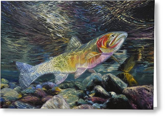 Fishing Boats Greeting Cards - Westslope Cutthroat Trout Greeting Card by James Corwin