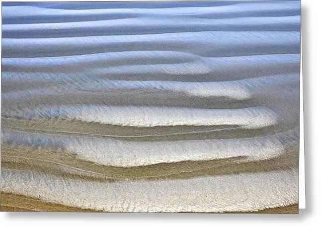 Wet sand texture on ocean shore Greeting Card by Elena Elisseeva