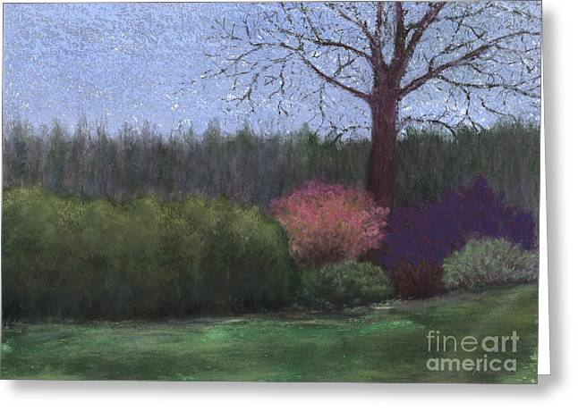Dew Pastels Greeting Cards - Wet Spring Morning Greeting Card by Ginny Neece