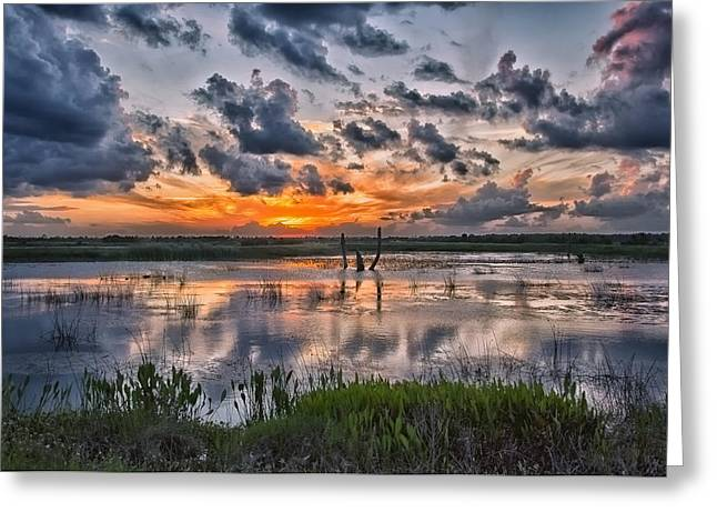 Sunset Prints Greeting Cards - Wetland Orange Sky Greeting Card by Louise Hill