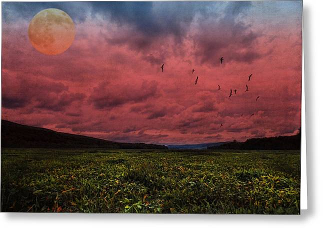 Reverence Digital Art Greeting Cards - Wetland Reverie Greeting Card by Pamela Phelps