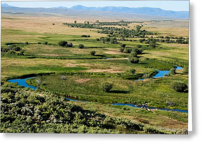 Geobob Greeting Cards - Wetlands and Meanders of the Arapaho National Wildlife Refuge in North Park Colorado Greeting Card by Robert Ford