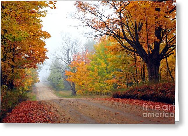 Rustic Greeting Cards - Wexford County Autumn 2 Greeting Card by Terri Gostola