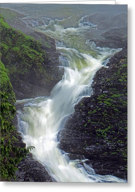 Recently Sold -  - Berry Greeting Cards - Wallace Falls Base Greeting Card by Brad Walters