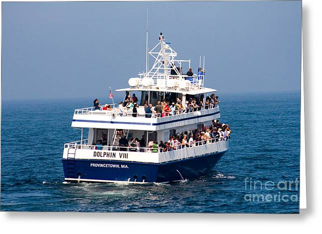 Whale Watching Greeting Cards - Whale Watching Boat Greeting Card by Tim Holt