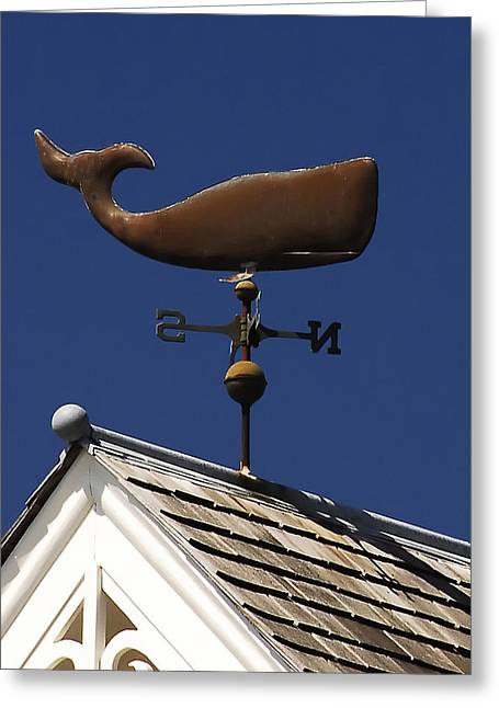 Wind Vane Greeting Cards - Whale wind vane Greeting Card by David Lee Thompson
