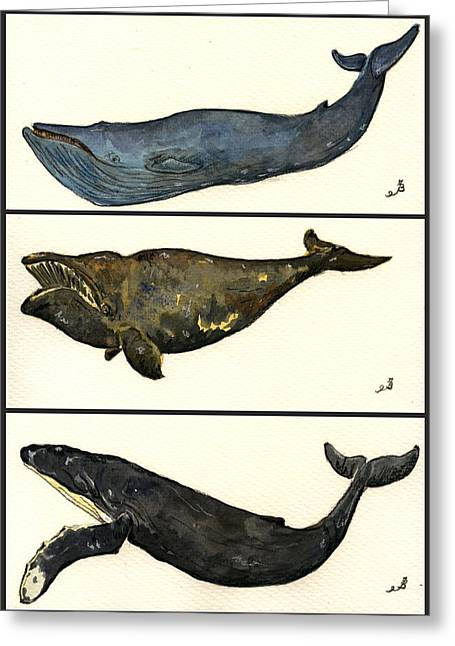 Humpback Whale Paintings Greeting Cards - Whales compilation 1 Greeting Card by Juan  Bosco