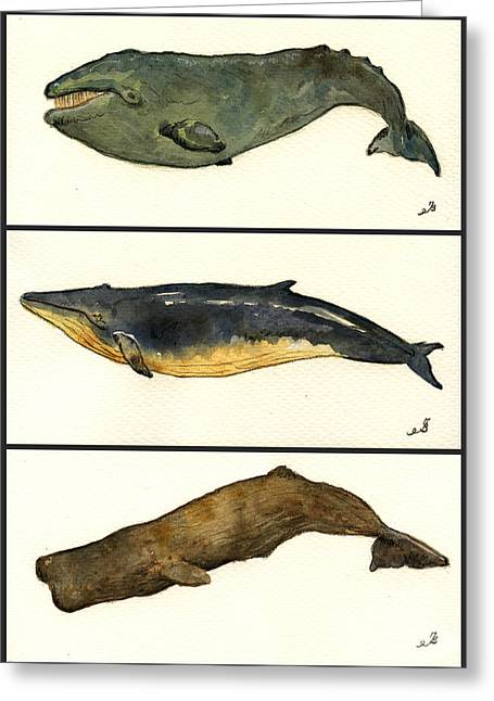 Ocean Mammals Greeting Cards - Whales compilation 2 Greeting Card by Juan  Bosco