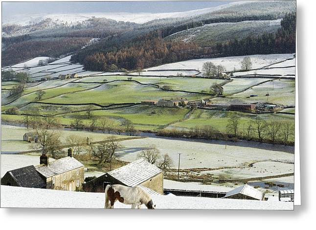 Grazing Snow Greeting Cards - Wharfedale in Mid-Winter Greeting Card by John Potter