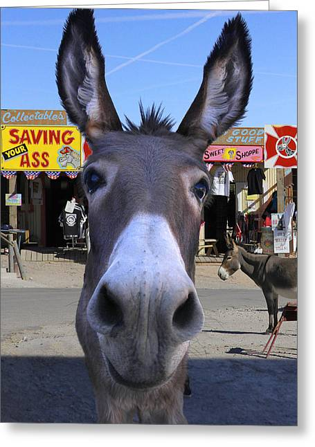 Donkey Greeting Cards - What . . . No Carrots Greeting Card by Mike McGlothlen