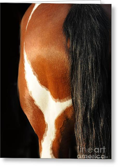 Crazy Horse Photographs Greeting Cards - What a View Greeting Card by Renee Forth-Fukumoto