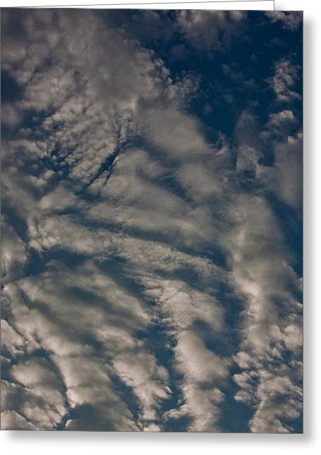 Cvnp Greeting Cards - What Do You See Greeting Card by Claus Siebenhaar