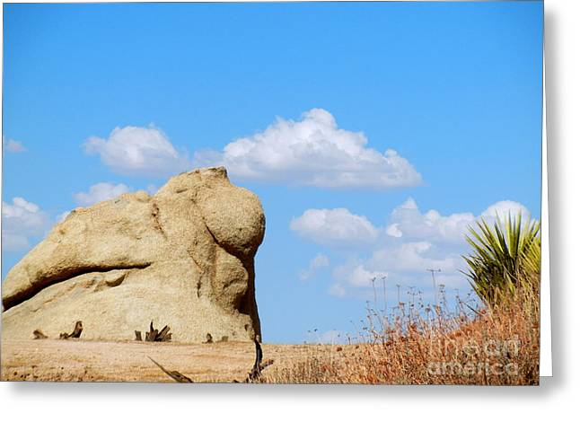 Bayonet Greeting Cards - What Does the Rock Say Greeting Card by Vicki Buckler