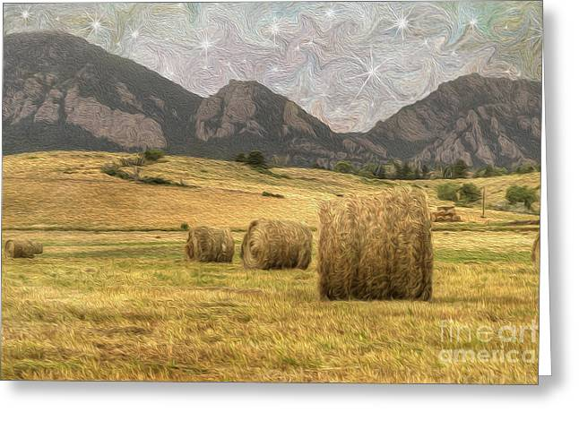 Harvesting Greeting Cards - What The Hay Greeting Card by Juli Scalzi