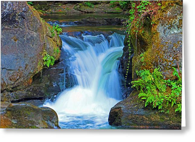 Recently Sold -  - Stream Greeting Cards - Whatcom Small Falls Greeting Card by Brad Walters