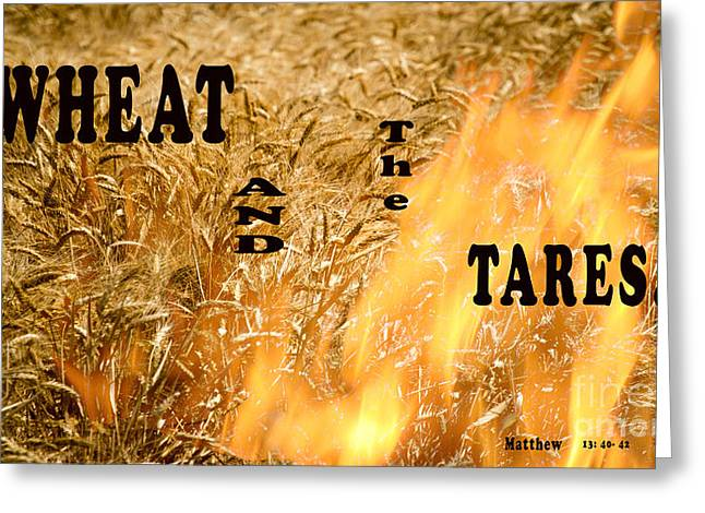 Parable Digital Art Greeting Cards - Wheat and The Tares Greeting Card by Beverly Guilliams