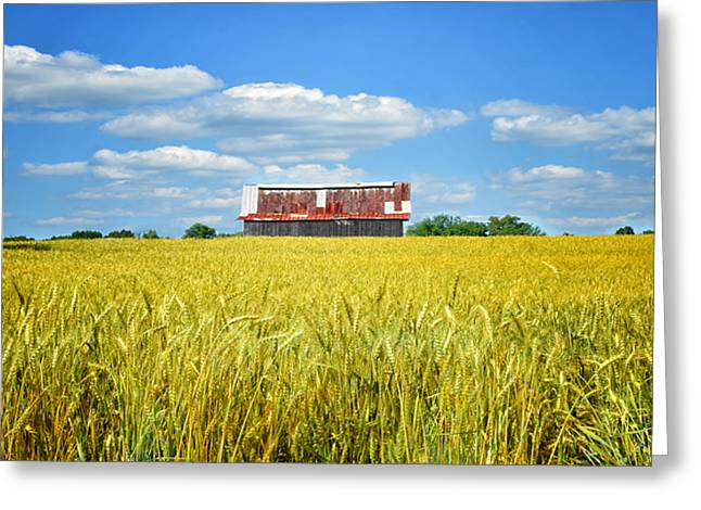 Wheat Field Sky Pictures Greeting Cards - Wheat Farm Greeting Card by Steven  Michael