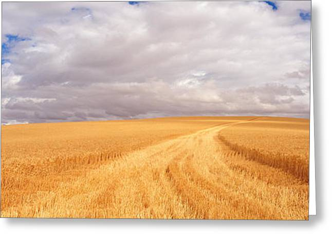 Overcast Day Greeting Cards - Wheat Field, Washington State, Usa Greeting Card by Panoramic Images