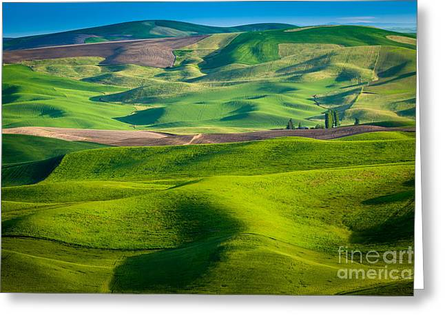 Rural Scenery Greeting Cards - Wheat Hill Greeting Card by Inge Johnsson