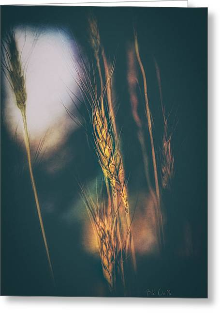 Art Decor Greeting Cards - Wheat Of The Evening Greeting Card by Bob Orsillo