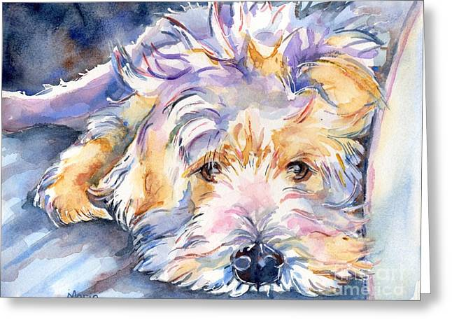Dog Greeting Cards Greeting Cards - Wheaten Terrier Painting Greeting Card by Maria