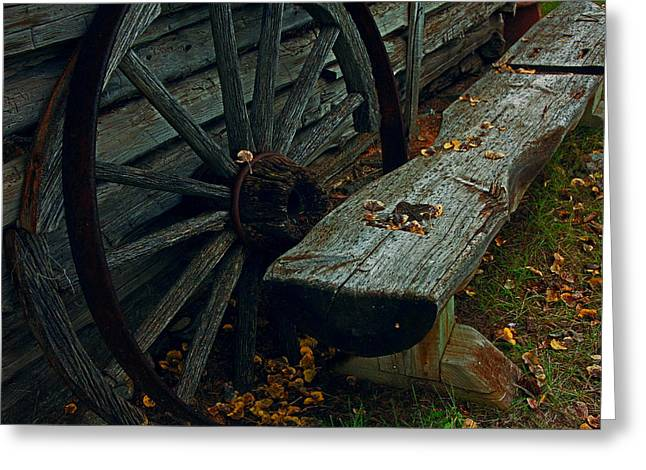 Ravaged By Time Greeting Cards - Wheel and Bench Greeting Card by Mike Flynn