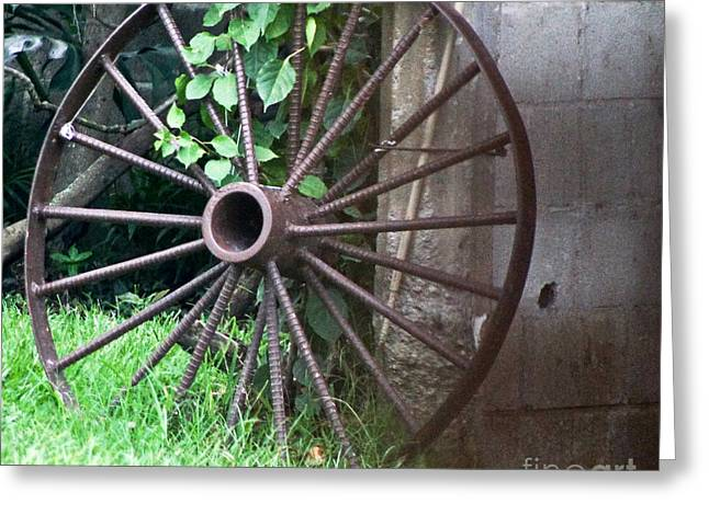 Wheel C Greeting Card by D C