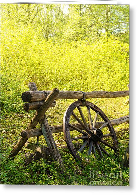 Wheels Photographs Greeting Cards - Wheel on Fence Greeting Card by Carlos Caetano