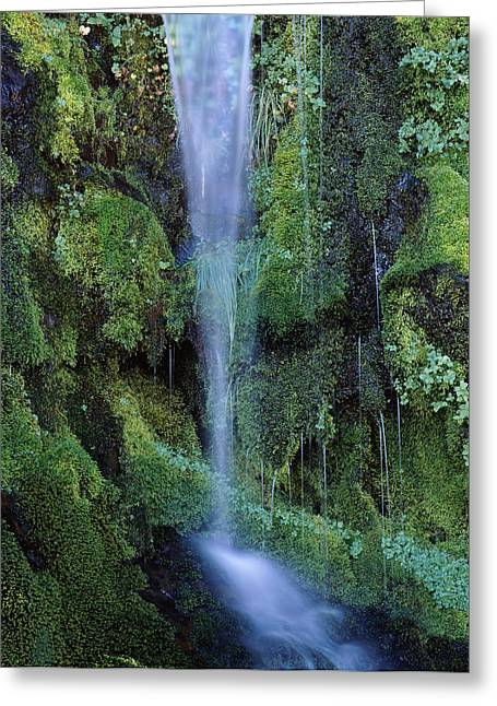 Crater Lake National Park Greeting Cards - Wheeler Creek Waterfall On Dutton Greeting Card by Panoramic Images
