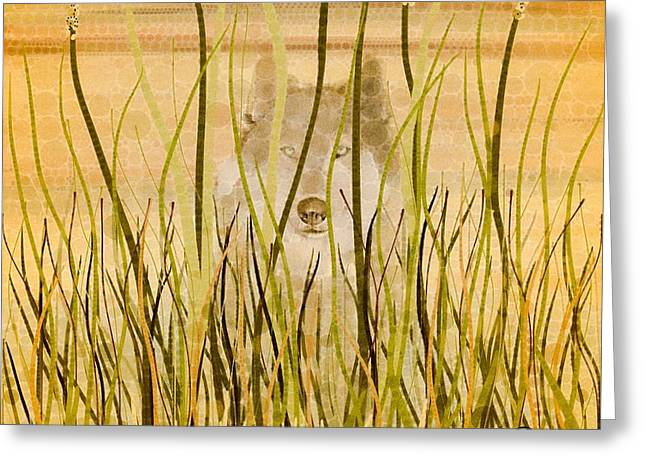 Wolf Eyes Greeting Cards - When all is Done Greeting Card by Steven Boland