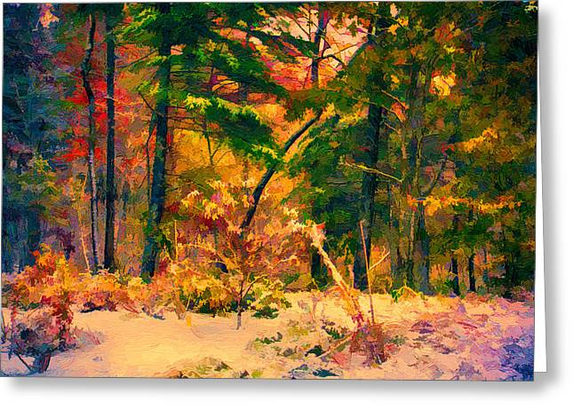 John Haldane Greeting Cards - When Fall Becomes Winter Greeting Card by John Haldane