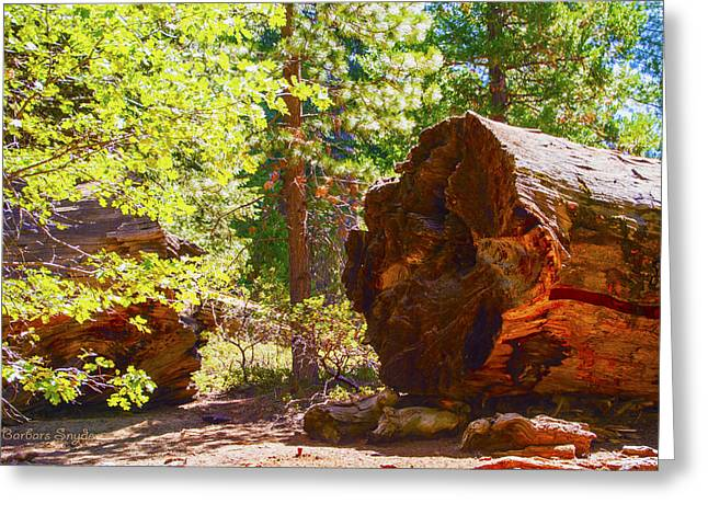 Tree Roots Photographs Greeting Cards - When Giants Fall Greeting Card by Barbara Snyder