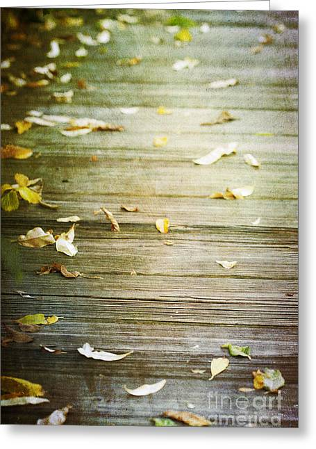 A New Focus Photography Greeting Cards - When He Leaves  Greeting Card by A New Focus Photography