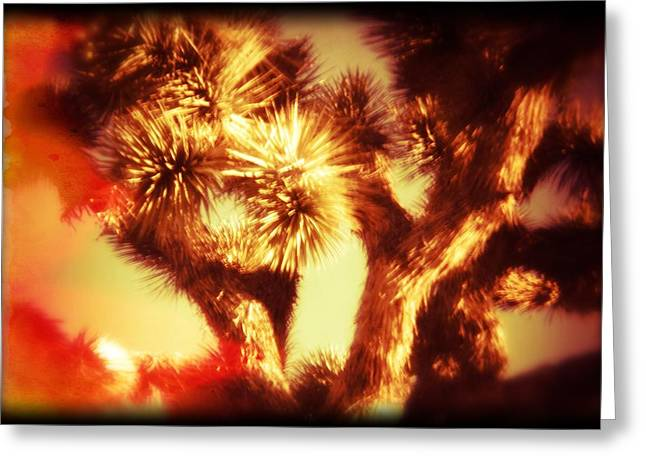 Evacuee Greeting Cards - When Heat and Drought Meets a Joshua Tree Greeting Card by Carolina Liechtenstein