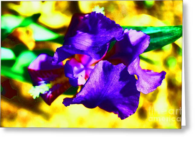 Stamen Digital Art Greeting Cards - When Iris Eyes Are Smiling Greeting Card by Luther   Fine Art