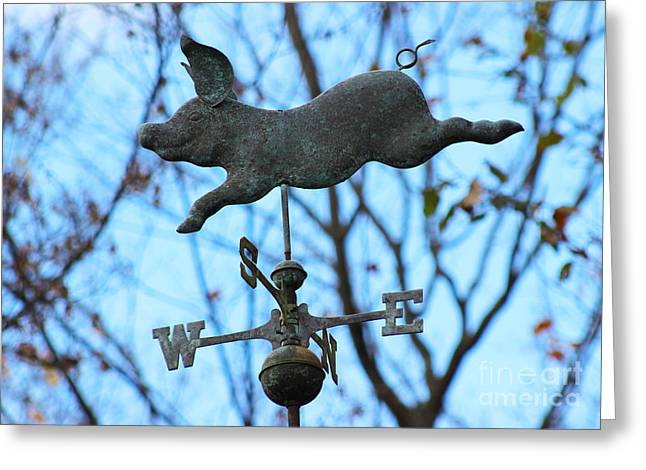 Weathervane Greeting Cards - When Pigs Fly Greeting Card by Karen Adams