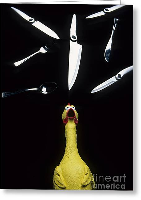 Bob Christopher Greeting Cards - When Rubber Chickens Juggle Greeting Card by Bob Christopher