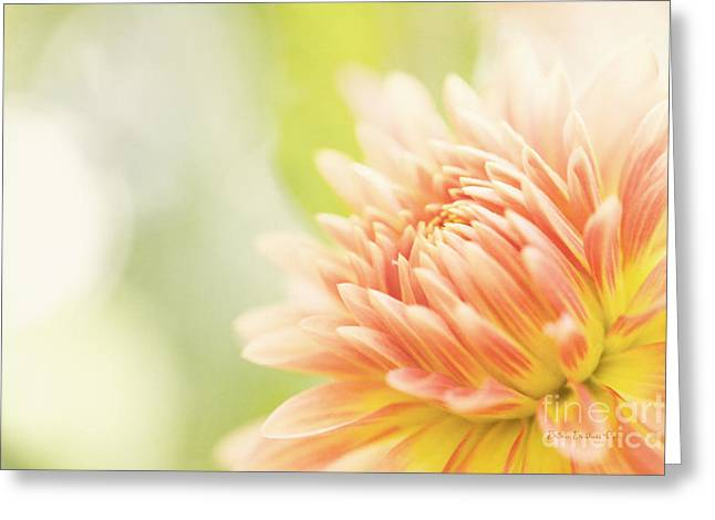 When Summer Dreams Greeting Card by Reflective Moment Photography And Digital Art Images