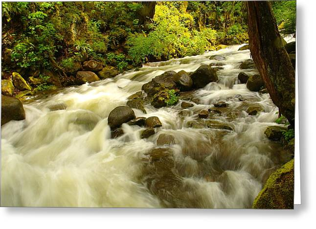 Water In Creek Greeting Cards - When The Dream Turns The Corner Greeting Card by Jeff  Swan