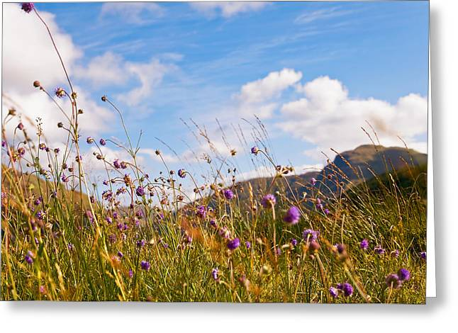Road Travel Greeting Cards - When the Sun is Shining Everything Around Smiling Towards. Scotland Greeting Card by Jenny Rainbow