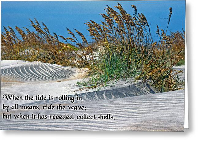 Go With The Flow Greeting Cards - When the Tide Is Rolling In Greeting Card by Mike Flynn