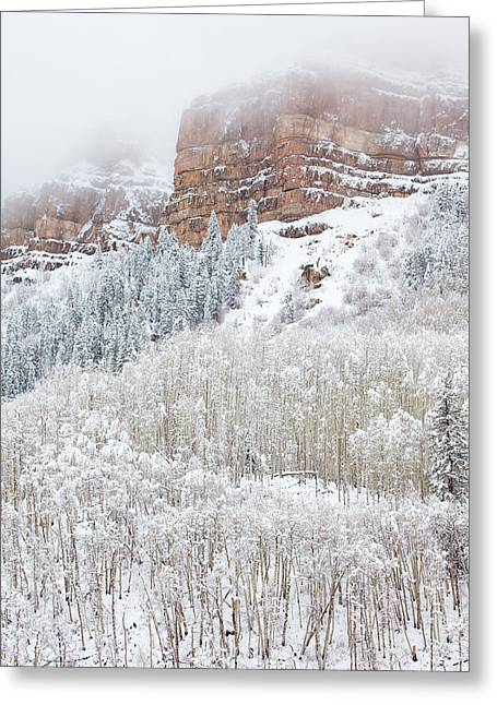 River Scenes Greeting Cards - When Winter Falls Greeting Card by Darren  White