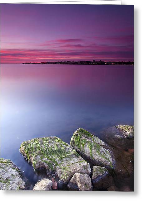 Annapolis Maryland Greeting Cards - When Wishes Come True Greeting Card by Edward Kreis